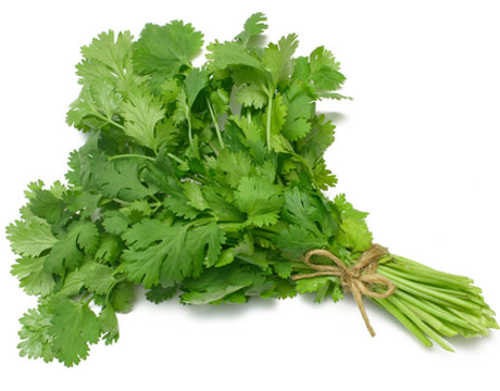 coriander-benefits2.jpg