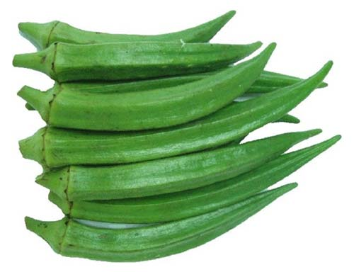 okra-or-ladies-finger.jpg
